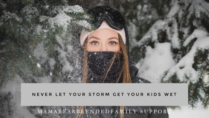 Containing The Storm – Sheltering Children From The Effects of Co-parentingConflict